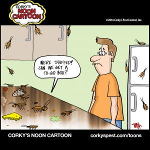 Cockroaches00004