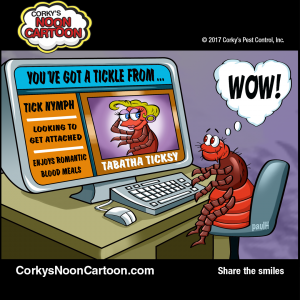Ticks00005-1