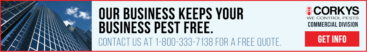 Our business keeps your bisiness pest free