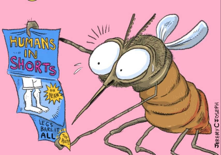 Why Do Mosquitoes Love You?  They think you're HOT!