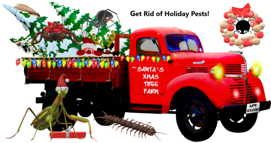 Have Holly, Jolly Pest Free Holidays!