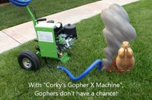 gopher-x-machine-and-gopher-for-blog
