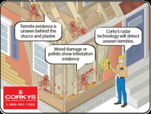 radar-detecting-termites-in-house-interior-view-cartoon