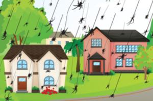 raining-spiders