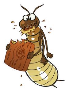 Cartoon termite eats piece of wood.