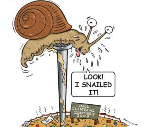 snailed-it-blog-1-3-21-2