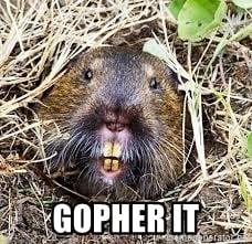 GOPHER IT - lets gopher it | Meme Generator