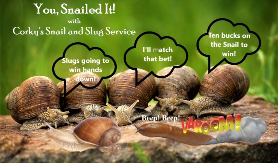 Snails and Slugs:  Slow, But Sure to Ruin Your Garden!
