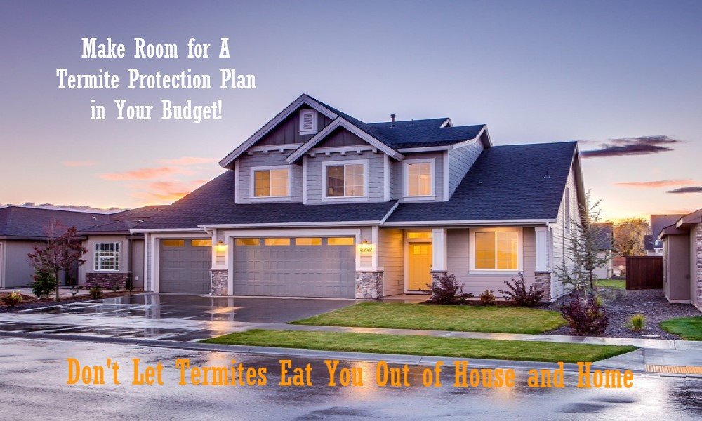 Your Household Budget Should Include – A Termite Protection Plan.