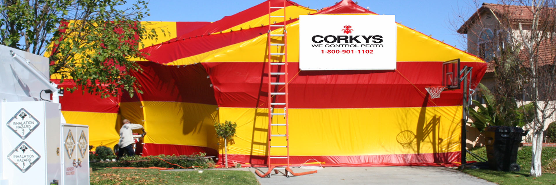 FUMIGATION SERVICES TERMITES, COCKROACHES AND BED BUGS